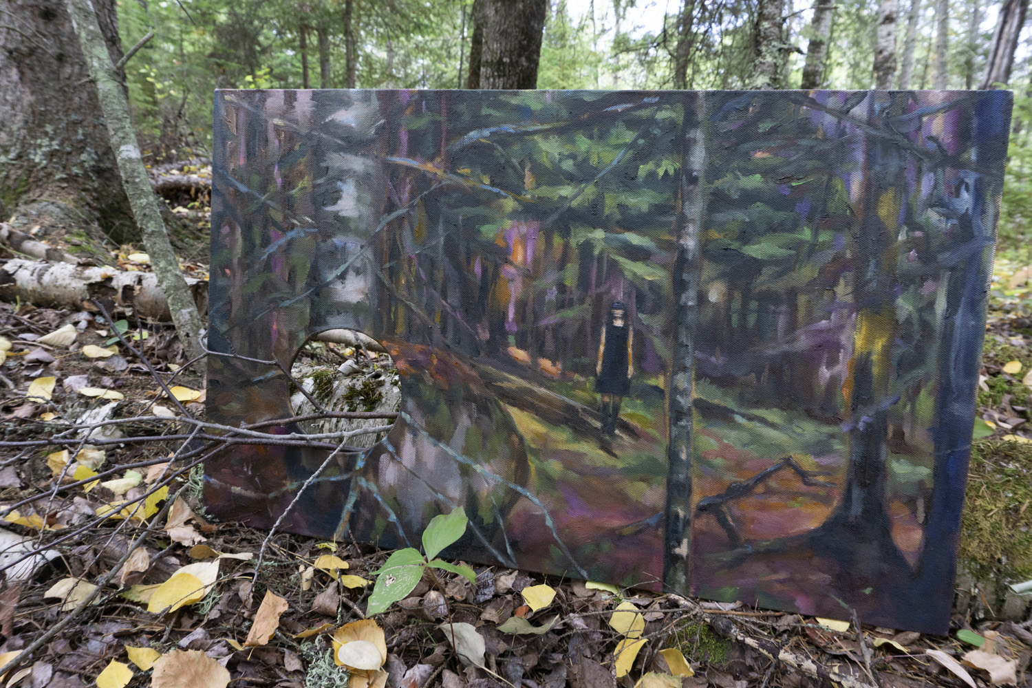 Boreal Forest 2