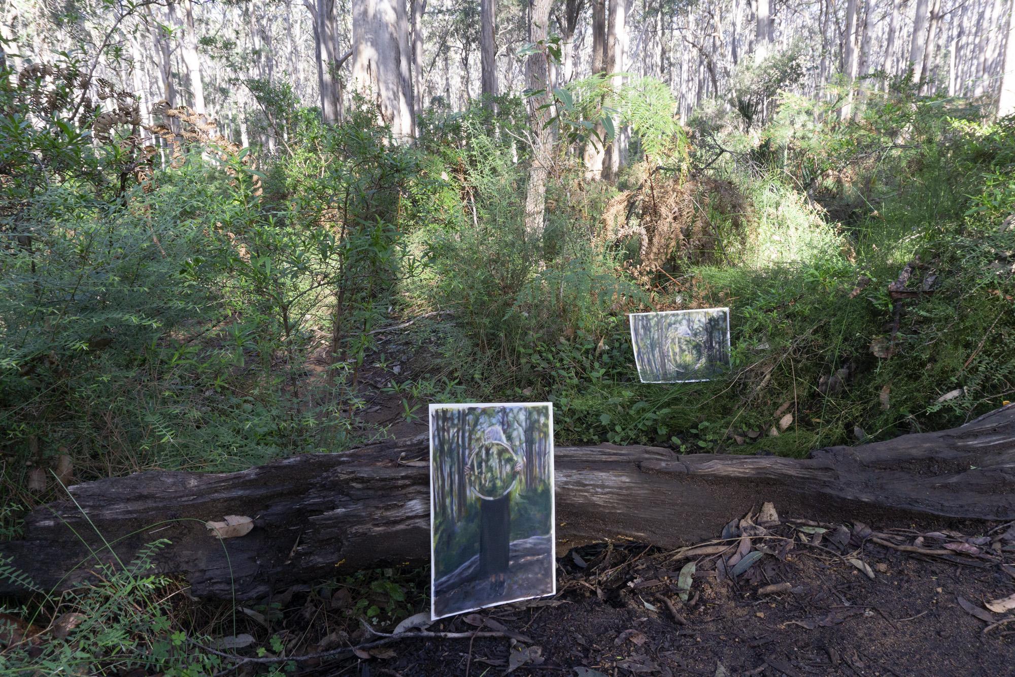 Boranup Forest 2