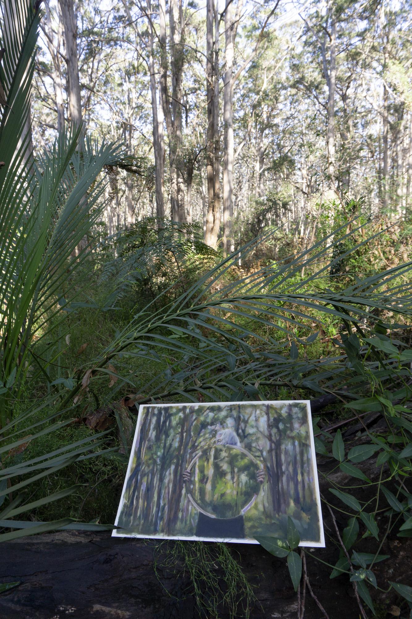 Boranup Forest 3