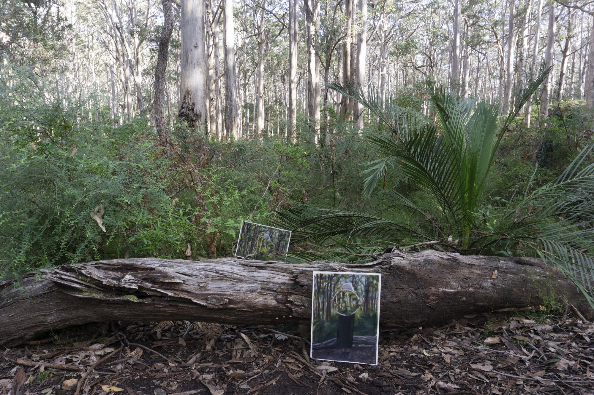Boranup Forest 8